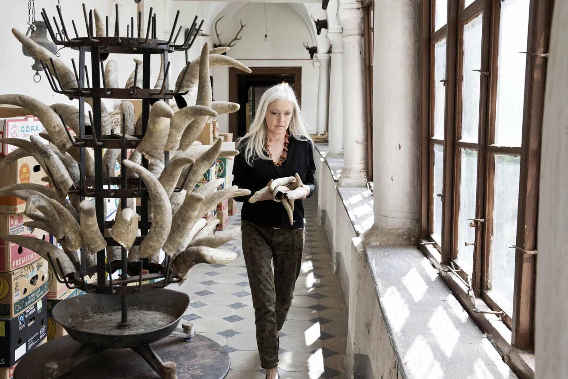 NÖ Waldviertel Galerie Kunst - Irena Rosc: Duchamp, Steiner und die Kuh